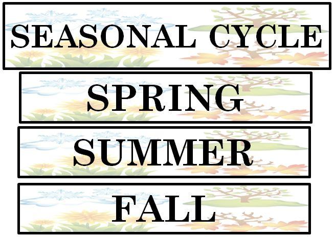 Active Anchor Chart Seasonal Cycle  Treetopsecret Education